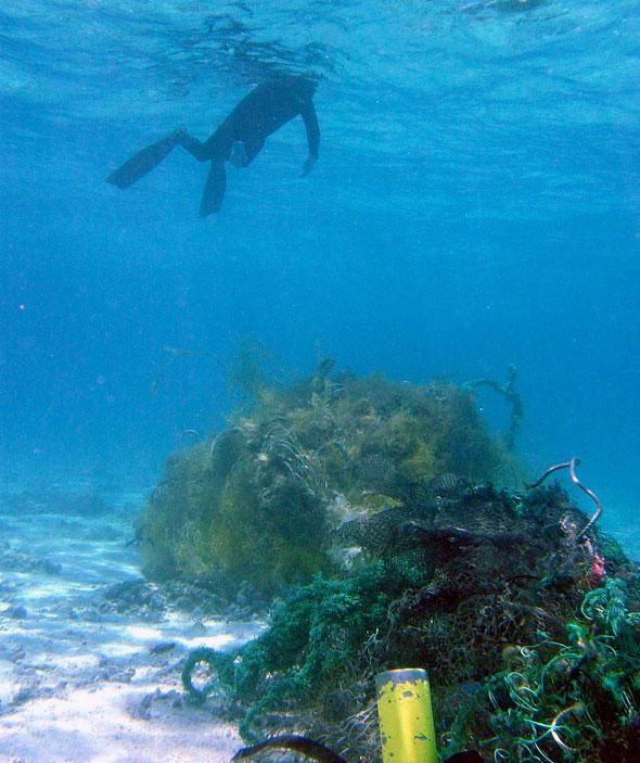 Marine debris accumulation