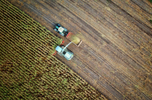 A new blockchain platform is here to transform agriculture and fishing